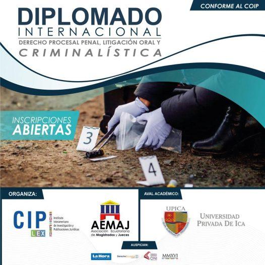 Diplomado Internacional en Derecho Procesal Penal, Litigación  Oral y Criminalística